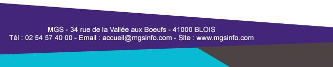MGS - 34 rue de la Vallée aux Boeufs - 41000 BLOISTél : 02 54 57 40 00 - Email : accueil@mgsinfo.com - Site : www.mgsinfo.com